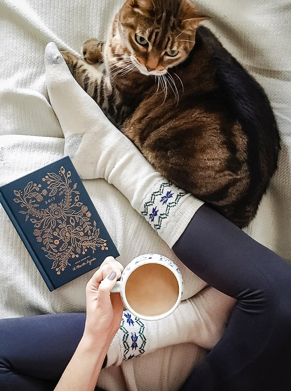 Woman with cat, coffee and journal