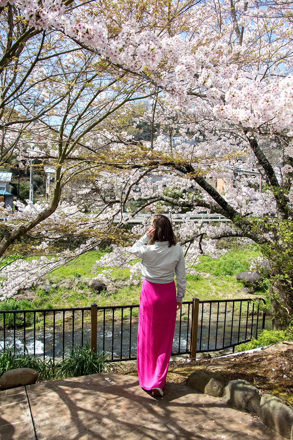 woman under cherry blossom trees