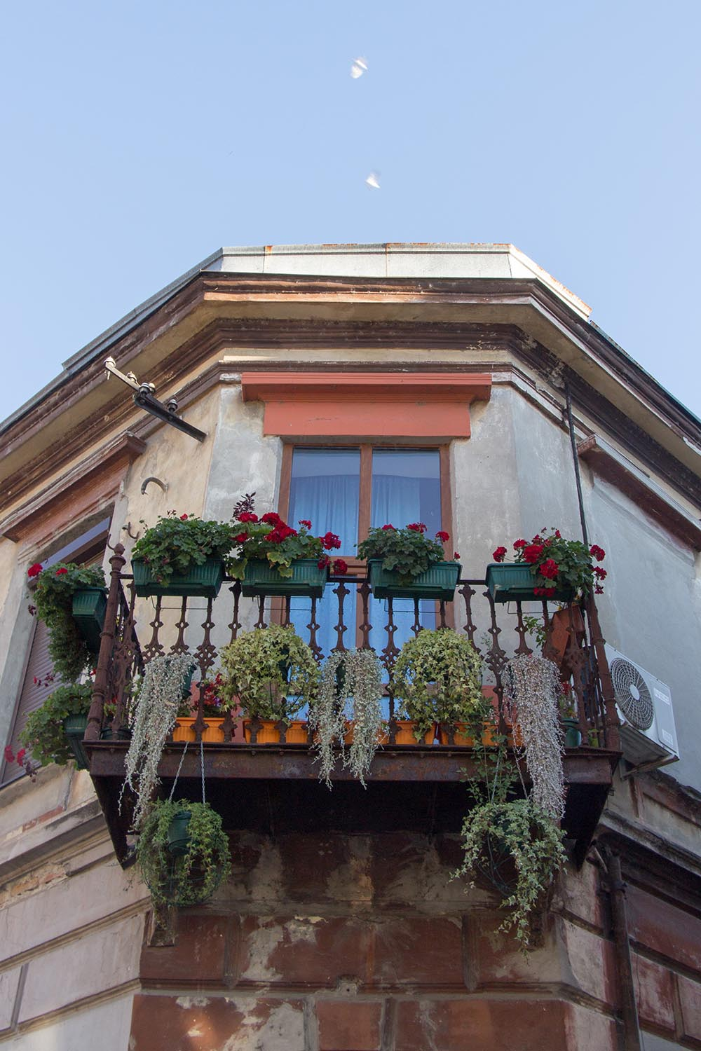 Balcony overflowing with flowers in Novi Sad, Serbia